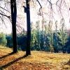 photo_00034